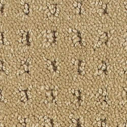 Choose Your Carpet Albemarlecarpet Com